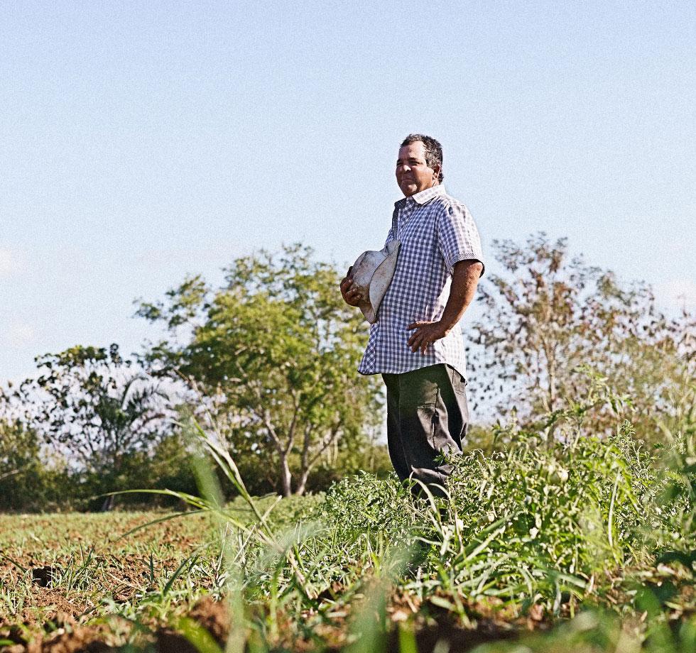 Speak Up NC Farm Worker